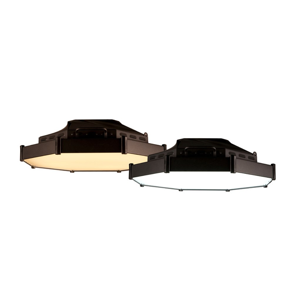 CHQ-SPFVLR - Space Force LED Fixture Variable w/ Bridle and